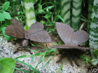 Pair of Rustic Cast Iron Butterfly Garden Ornaments