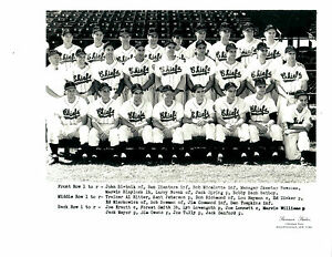 1954 SYRACUSE CHIEFS 8x10 TEAM PHOTO BASEBALL NEW YORK SPRING BOWMAN SANFORD
