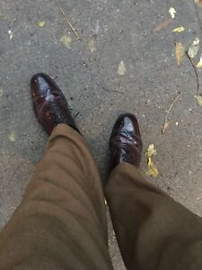 Alden Shell Cordovan Wingtip Oxfords 9.5 US USED But Stunning GREAT CONDITION