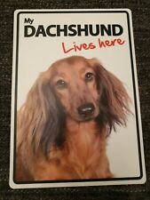 My DACHSHUND Lives Here A5 Plastic Sign bargain cheap