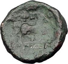 AMPHIPOLIS in Macedonia 146BC RARE R2 Ancient Greek Coin POSEIDON & HORSE i62435