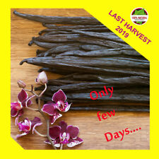 "50 Extract Grade B Madagascar Bourbon Whole Vanilla Beans-Pods 3""-5"" Inchers"