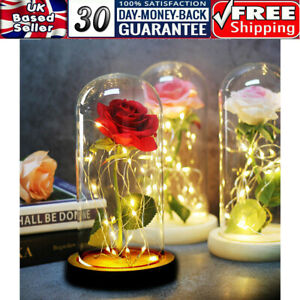 Beauty LED Flower Light Enchanted Rose in Glass Dome Valentine's Day Gift Party