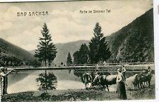 Germany AK Bad Sachsa - Steinaer Tal old postcard