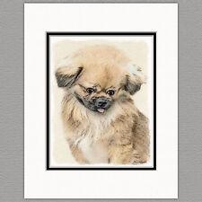 Pekingese Dog Original Art Print 8x10 Matted to 11x14
