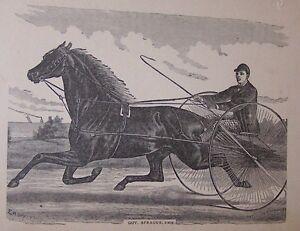 ORG LATE 1800'S BOOKPLATE PRINT-RACE HORSE W/DRIVER-GOV SPRAGUE-ANIMAL (F)