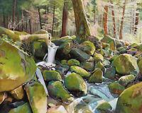 "Original Artwork oil painting Creek rocks on canvas panel, nature 16''x20"""