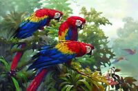 Art Print Macaw Parrot Oil painting Giclee Printed on canvas 16x24 Inch P048