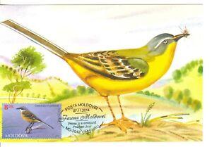 Moldova 2014  Birds   maxicard