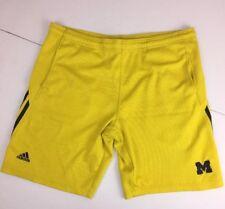 Vintage 90s Adidas Flag Tag NCAA MICHIGAN WOLVERINES Stitched Shorts Small