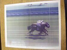 17/08/1996 Horse Racing: Newbury Race Course, Race 2 - Photo Finnish Original Ph