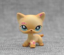 Littlest Pet Shop Messiest Cream Siamese Splash Cat Kitty Blue Eyes LPS #816