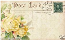 FLORAL YELLOW ROSE POSTCARD (66) SCRAPBOOK EMBELLISHMENTS HANG/GIFT TAGS