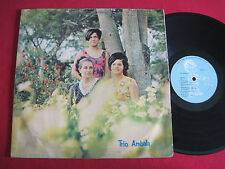 MEGA RARE PRIVATE LATIN LP - 1960'S SPANISH POP - TRIO AMBALA (COLOMBIA)