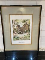 """Vintage Sallie Middleton """"Appalachian RuffLed Grouse"""" Matted and Framed 19x15"""""""
