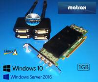 Dell Optiplex Tower 790 990 7010 9010 Matrox Quad 4 Monitor DVI Video Card
