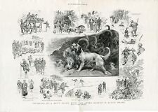 Otterhound Otter Hound Hunting Dog Art Engraving 1895 South Wales Hunt