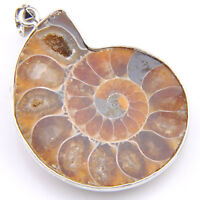 Xmas Holiday Jewelry Gift  Natural Ammonite Fossil Gems Silver Necklace Pendant