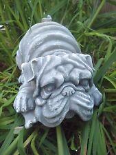 """Pug bull dog mold  latex w plastic backup mould 5.5""""L x 4""""W x 3.75"""" H"""