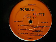 Scream series Vol17  SMS17 D. JONES feat LEFT EYE / F. JACKSON / D. HILL D. BRAT