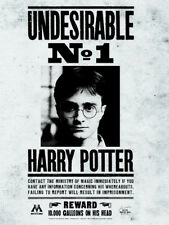 Harry Potter - Undesirable No.1 - Ready Framed Canvas