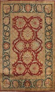 Traditional Floral Agra Oriental Area Rug Living Room RED/ GREEN Handmade 9'x12'