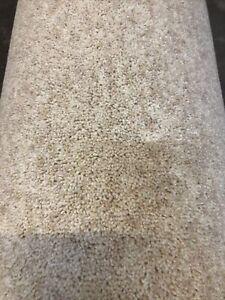 3.40 X 5m 80/20 Wool Twist Carpet Remnant Dimension Heathers 40oz Rice Pudding