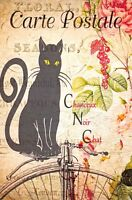 Fine Art Postcard French Vintage Shabby Chic Style, Lucky Black Cat, Floral 16K