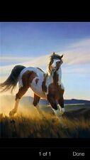 Nancy Glazier AUDACIOUS  S/N Litho - New, Mint - PAINT HORSE