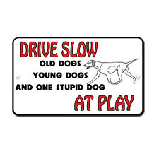 Drive Slow Young Old Stupid Dog At Play Novelty Funny Metal Sign 8 in x 12 in