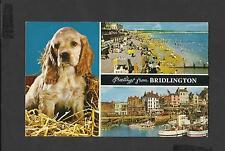 Bamforth Postcard Multi View Greetings From Bridlington North Riding Yorkshire