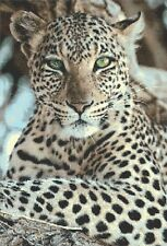 LEOPARD # 6 - COUNTED CROSS STITCH CHART