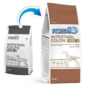FORZA10 Active Intestinal Colon Phase 2 - kg.10 Croquettes Dog [Ex Int. Colitis]
