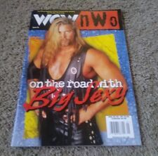 WCW NWO #46 Big Sexy  Preowned Good Condition