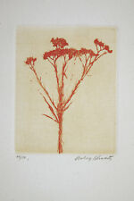 "Signed  1966 ""Wild Flower"" etching 80/100 by Aubrey Schwartz"