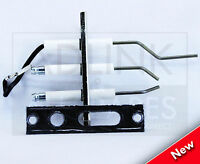 MAIN COMBI 25 30 ECO & ECO ELITE IGNITION & IONISATION ELECTRODE KIT 5130293