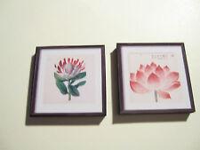 2 DOLLS HOUSE miniatura Stampe Botaniche A5