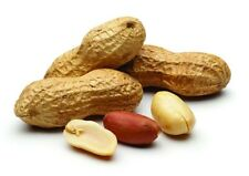Premium Raw Peanuts in Shell, Shelled Peanut, Roasted and Salted, Delish Snack