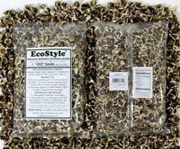 ~1000 Organic Moringa Seeds | Moringa Oleifera | Dried, Non GMO,Edible,Planting