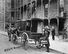 Photograph Vintage Horse Drawn Ambulance Bellevue Hospital New York 1895