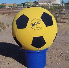 """Big Boy~48""  Training & HorsePlay Soccer Ball"