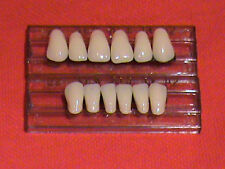 1 SET ACRYLIC ANTERIOR DENTURE/FALSE TEETH   SHADE  A2 SIZE 22