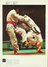 Original Vintage Poster 1976 Montreal Summer Olympics Judo Swimming Martial Arts