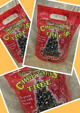GROW YOUR OWN REAL CHRISTMAS TREE FOR NEXT YEAR 2016 PACK GIFT JUST ADD WATER