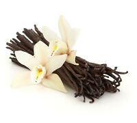 "1 LB Vanilla Beans Prime Gourmet Grade A Madagascar Bourbon 6"" - 7"" FREE Beans"