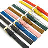 Extra-Long XL Fine Calf Leather Ladies Watch Strap 12mm 14mm Lots of Colours