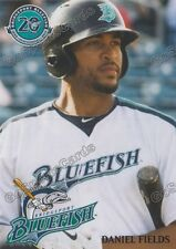 2017 Bridgeport Bluefish Daniel Fields Atlantic League Independent