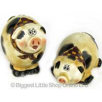 Cute Ceramic PIG SALT & PEPPER SET Kitchen Dining Room CRUET Novelty Collectable