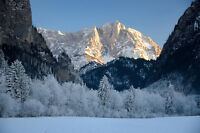 PHOTO ALPINE MOUNTAINS FOREST SNOW GIANT POSTER WALL ART PRINT LLF0035