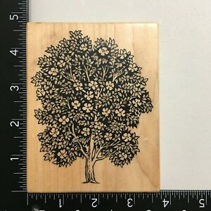 PSX K-1456 Magnolia Tree Wood Mounted Rubber Stamp